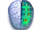 Smadzeņu spridzināšana
