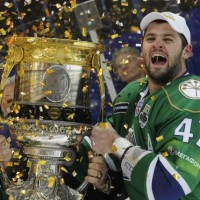niknais gailis no KHL