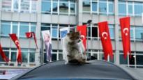 Blogs: mežonīgā Stambula, pašus turkus pārsteigusī Turcijas izlase