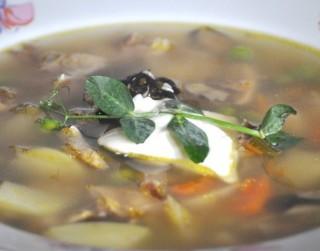 Sātīgā gaļas un dārzeņu zupa ar mēli