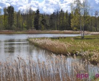 Stāsts par Latviju vai kā latvieši pie savas zemes tika