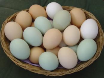 Ēdiet olas, lai labi redzētu
