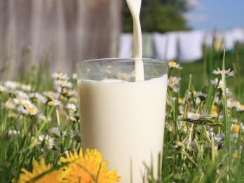 Populārākie mīti un patiesība par ekoloģiskajiem piena produktiem