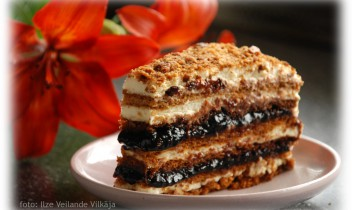 Fotorecepte: Medus kūka
