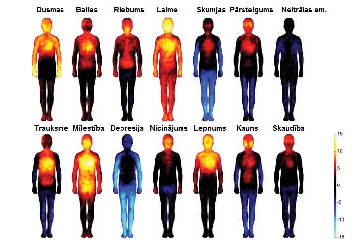 Kā emocijas atspoguļojas mūsu ķermenī