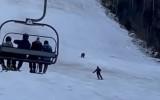 Video: Lācis mēģina panākt kalnu slēpotāju