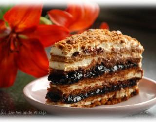 Fotorecepte: Medus kūka soli pa solim