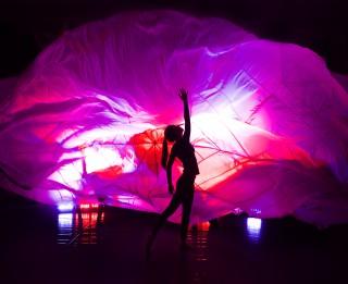 """""""Dzirnas"""" atkārtos dejas fantāziju MANA DABA"""