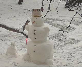 Kā zodiaka zīmju pārstāvji ceļ sniegavīru