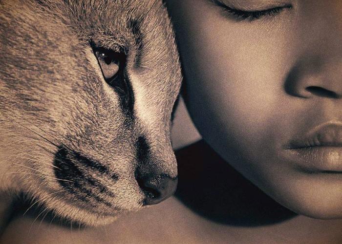 Dzīvnieku tiesību filozofija